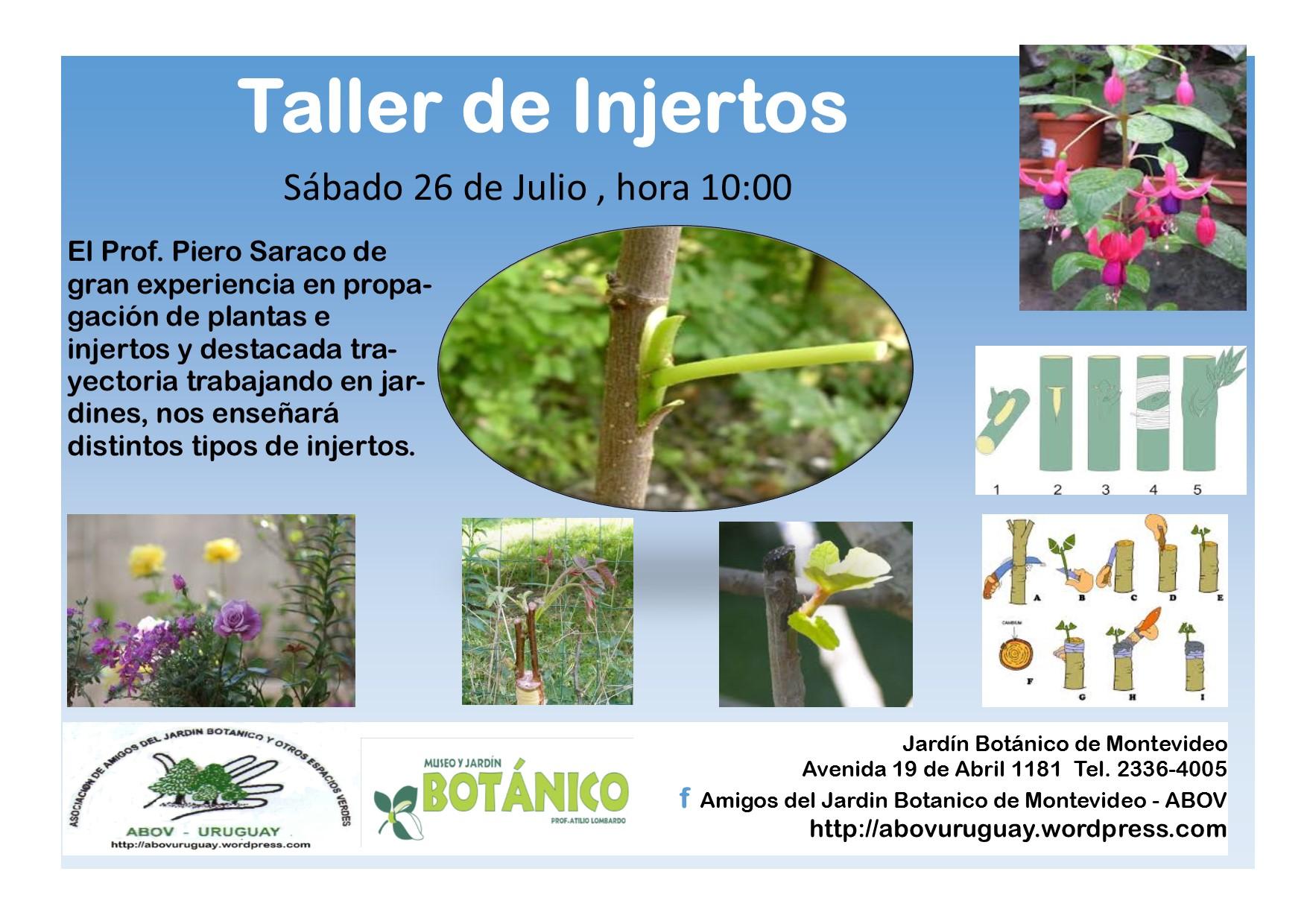 Taller de injertos piero saraco asociacion de amigos for Amigos del jardin botanico